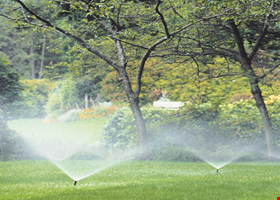 Clearwater Irrigation & Landscaping - Jacksonville