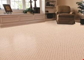 Carpet Care Solutions, Inc.