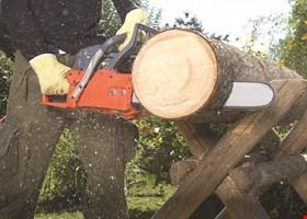 MITSDARFER BROTHERS TREE SERVICE