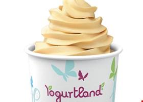 Yogurtland Boyle Heights