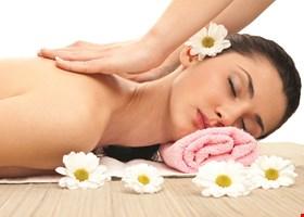 Oriental Body Work Brick Acupressure Massage