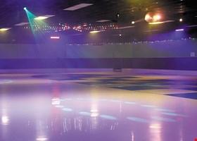 The Castle Roller Skating