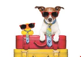 Crossroads Pet Professionals, LLC