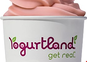 Yogurtland - Midtown