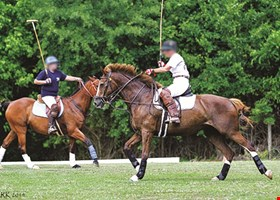 Chukkar Farm Polo Club